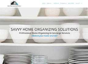 savvy home organization solutions website